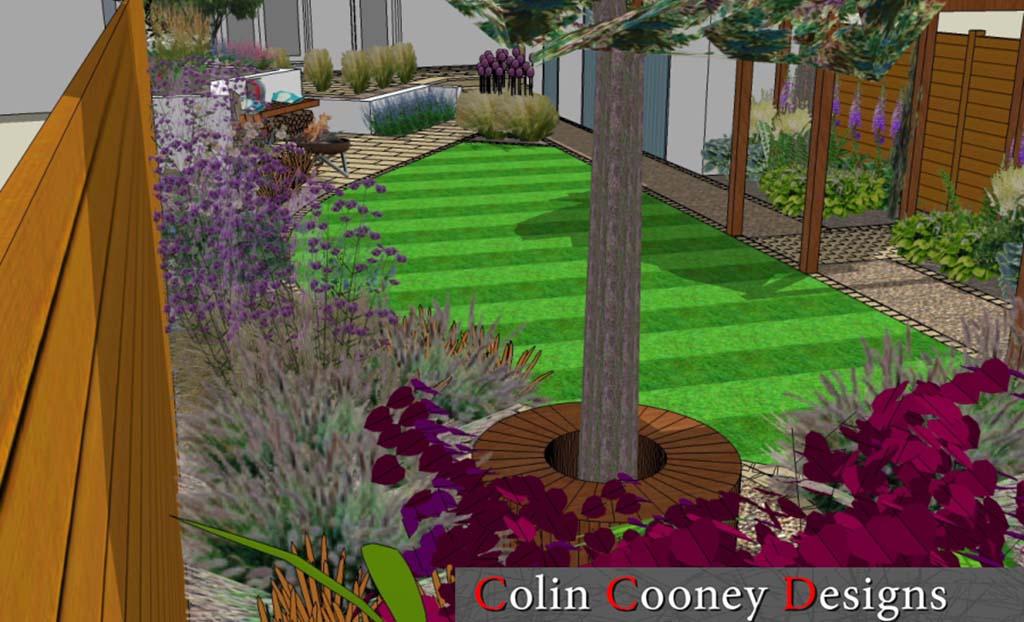 garden design dublin 2 - Colin Cooney Designs